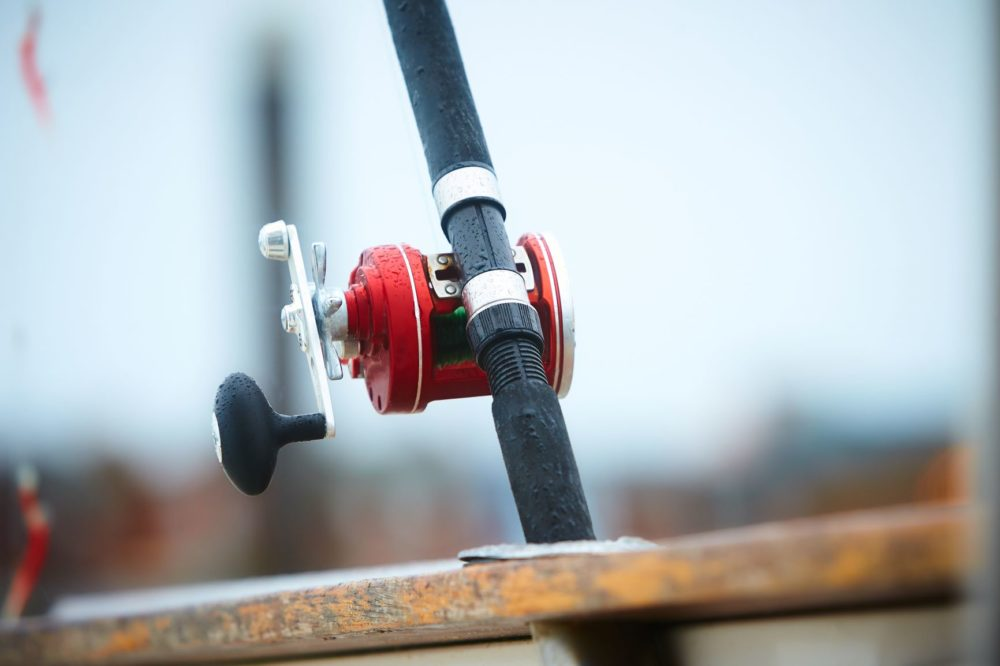 5 Best Saltwater Spinning Reels