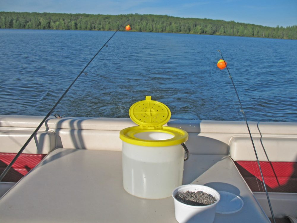 5 Best Aerated Bait Buckets For Minnows And More